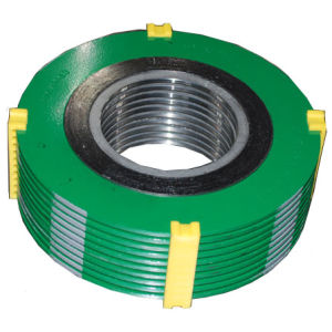 Sealing Parts Spiral Wound Gasket pictures & photos