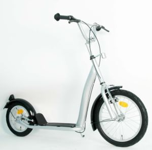Steel Frame Kick Scooter (PB1612B) pictures & photos