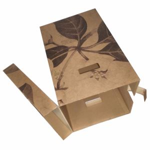 Accept Custom Made Printed Durable Flower Boxes pictures & photos