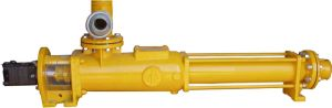 Single Screw Pump (G) pictures & photos