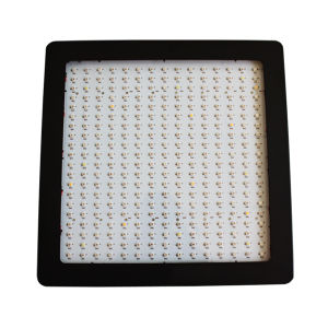 600W LED Grow Lamps Perfect for Indoor Garden
