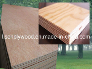 Bintangor Face Commercial Plywood for Furniture