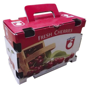 Fruit Corrugated Packing Box (gl013)