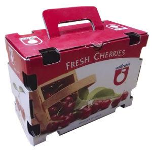 Fruit Corrugated Packing Box (gl013)