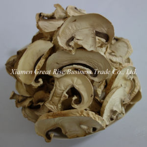 Competitive Price Good Taste Rich in Nutrion Air Dried Mushroom Slices
