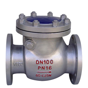 Carbon Steel Bolt Bonnet Swing Check Valve