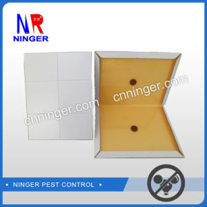 OEM/ODM High Quality Mouse Glue Trap with Low Price pictures & photos