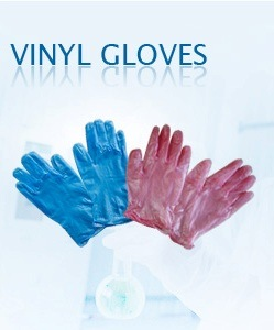 Disposal Gloves / Vinyl Gloves / Latex Gloves