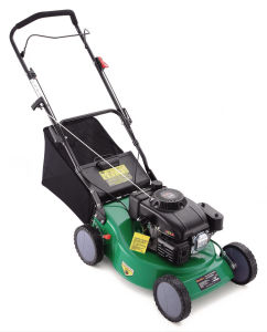Lawnmower (KM5031N0) pictures & photos