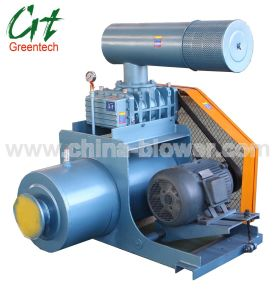 Positive Displacement Blower (PD Blower) pictures & photos