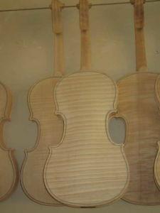 White Violin (FP04)