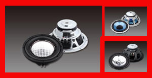 Professional Car Audio Speaker (GT WOOFER 250E, F, G SERIES)