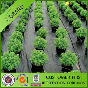 Plastic Agricultural PP Black Ground Cover pictures & photos