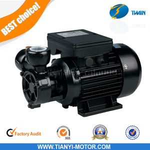 dB 125 Water Garden Pump 0.5HP with Copper Pump 0.75kw dB550 pictures & photos