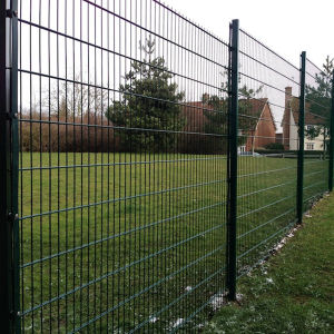 2.9 mm Welded Mesh Fence From China pictures & photos