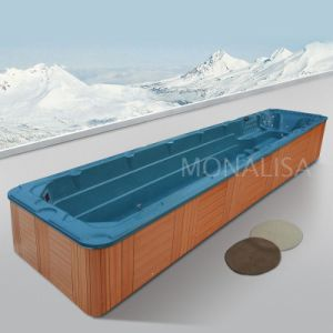 10+ Meter 8+ Person 380V Large Endless Acrylic Swim SPA pictures & photos
