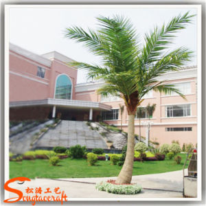 Outdoor Palm Tree Decorative Mini Fake Artificial Coconut Palm Tree pictures & photos