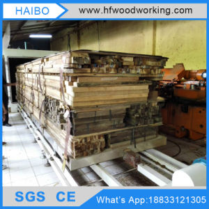 Dx-10.0III-Dx Hf Furniture Wood Design Machine Wood Drying Chamber