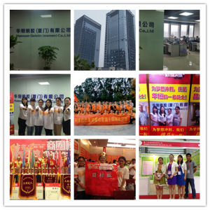High Quality Hot Sale Bulk Gelatin Granulars pictures & photos