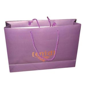 Paper Shopping Bag for Promotion Gift and Party Premiums pictures & photos