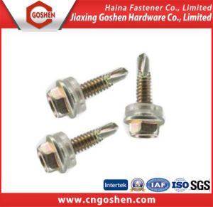 Flange Screw/ Head Self Drilling Screw pictures & photos