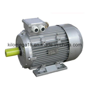 Y2 Series 3-Phase Asynchronous Electric Motors 0.75kw-280kw pictures & photos