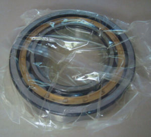 Rolling Mill Bearing Nu219 with Brass Cage M Nu Nj Nup Nnu N220 Roller Bearing pictures & photos
