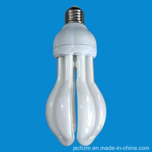4u Bauhinia Lamp 20W