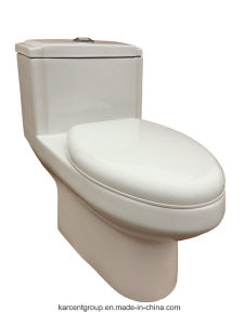 One Piece Toilet Siphonic Toilet Water Closet Wc 8020