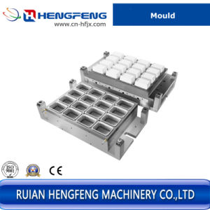 Plastic Square Mould Forming Different Container pictures & photos