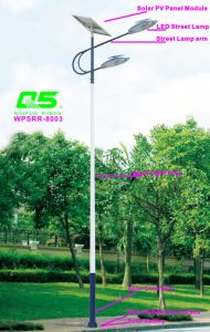 WPSRR-8003 3~15m Municipal Road Hot DIP Galvanized Steet Light Pole style pictures & photos
