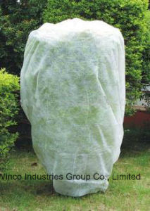 Polypropylene Non Woven Fabric Plants Protection Cover pictures & photos