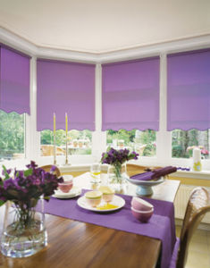 Roller Blind pictures & photos