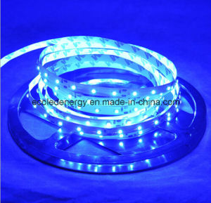 60SMD3528 4.8W/M White LED Strip pictures & photos
