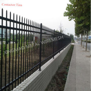 Ornamental Picket Fence/ Wrought Iron Garrison Fence (XM3-21) pictures & photos