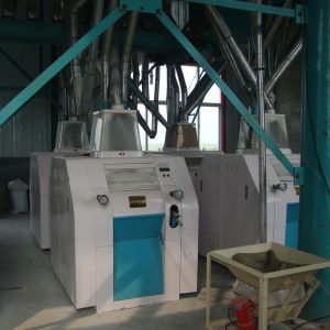 Corn Flour Mill Grinding Machinery (6FYF) pictures & photos