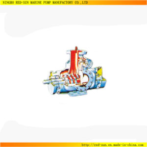 Best Price Marine Cargo Oil Pump/Twin Screw Cargo Pump (RS-17)