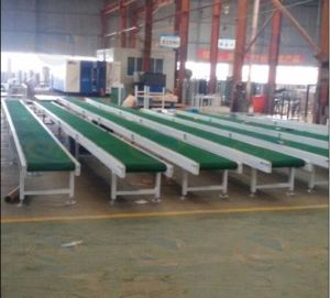Cheap Conveyor Belt pictures & photos