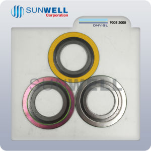 Spiral Wound Gasket with Innerand Outer Ring Mechanical Seals pictures & photos