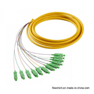 12 Colors Coded Fiber Optic Patchcord/Pigtail
