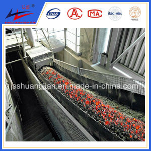 Rubber Belt Conveyor Factory in Power Plant for Hot Coal Transport pictures & photos