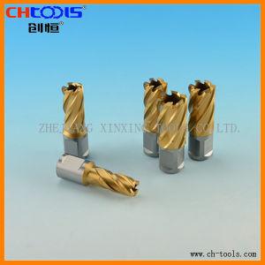 HSS Core Drill Bit (Weldon Shank) (DNHX) pictures & photos