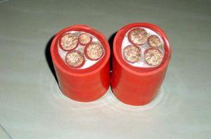 0.6/1kv Copper Core Silicon Rubber Insulated Silicon Rubber Sheathed (Flame Retardant) Power Cable (Soft)