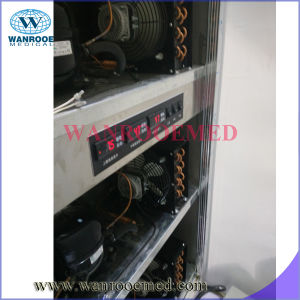Ga303 Mortuary Equipment Side Loading Morgue Refrigerator with Control Panel pictures & photos