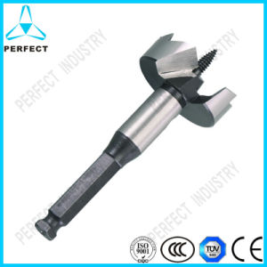 Hex Shank Self Feed Wood Forstner Drill Bit pictures & photos