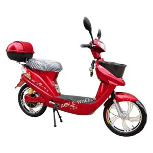 200W~500W Electric Bike with Pedal pictures & photos
