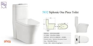 Ceramic One-Piece Toilet (No. 316) , Siphonic Toilet S Trap, 300mm Roughing-in pictures & photos