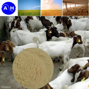 High Crude Protein Feed Amino Acid Powder pictures & photos