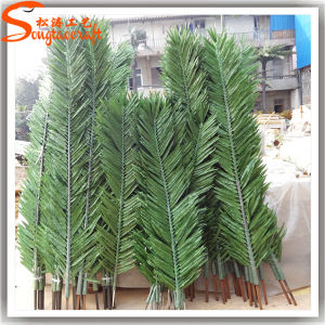 Home Decoration Artificial Outdoor Palm Trees Coconut Palm Tree pictures & photos