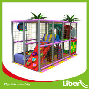 Chairman of Wenzhou Toy Association Small Indoor Playground pictures & photos